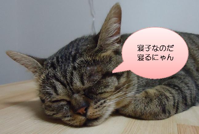 吹き出し猫
