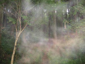 心霊写真?2