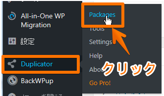 Duplicator設定
