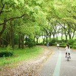 小金井公園で自転車練習 乗れたらサイクリングコースや広い敷地探索