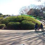 小金井公園の自然の中遊具で遊ぼう アスレチックやソリにふわふわドーム