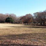 小金井公園ぶらり散策 アクセスと園内地図
