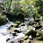 開湯伝説 動物が発見したといわれている日本の温泉 関東の巻