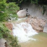 開湯伝説 動物が発見したといわれている日本の温泉 近畿の巻
